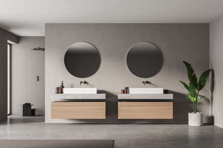 Modern bathroom interior with two sinks and plant in eco minimalist style. No people. 3D Rendering