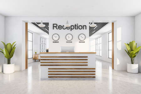 Light reception room interior with computer, clocks on the wall. Reception entrance with office desk, front view, white concrete floor and plant, 3D rendering