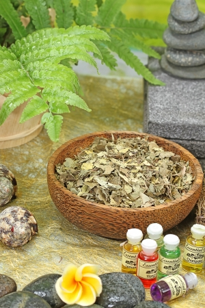 Bali spa Stock Photo
