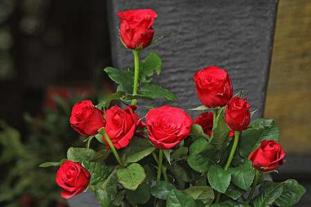 Indonesian flowers