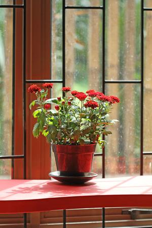 nuance: interior design red nuance