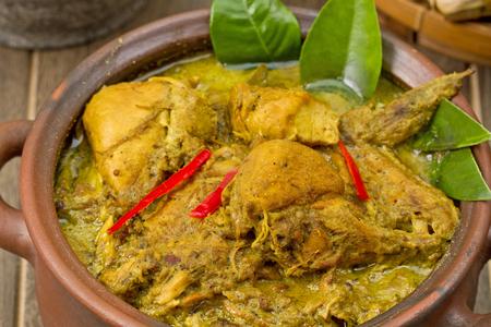 opor ayam, Indonesian chicken Curry Foto de archivo