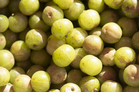 fresh Indian gooseberry in market