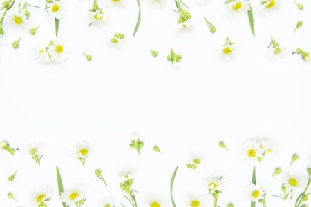 Flowers composition. Border made of daisy white flowers. Flat lay, top view Stok Fotoğraf