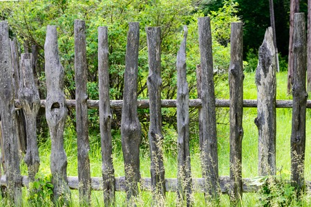 enclosing: Old wooden fence enclosing bee apiary summer. russia