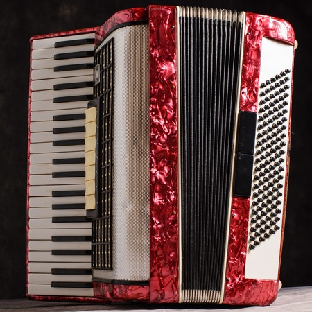 mother of pearl: Mother of pearl accordion on a black background.