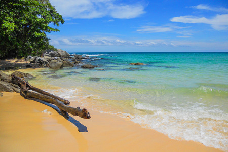 Old driftwood blue sea white sand and waves on the beach, beautiful nature during summer at Koh Miang island in Mu Ko Similan National Park, Phang Nga province, Thailand, 16:9 widescreen