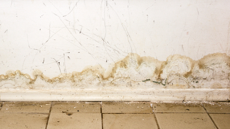 Big wet spots and cracks and black mold on the wall near flour in domestic house room after heavy rain and lot of water - Image
