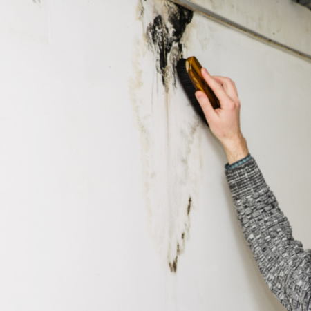 Blurred image of a mans hand removes black mold on the wall after leakage - Image