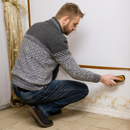Bearded man removes black mold on the wall near flour after leakage - Image