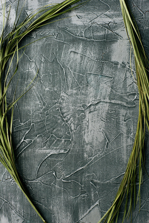 Dramatic grey grunge seamless stone texture venetian plaster background decor with palm leafs. Cracked grungy concrete cement decoration.