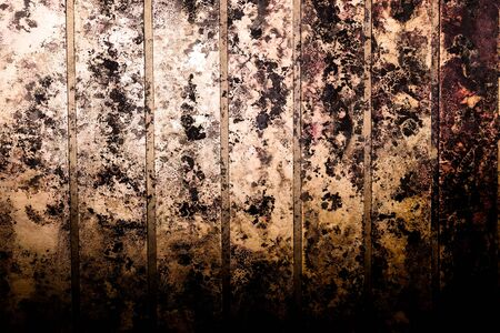 Black spots of toxic mold and fungus bacteria on a wall. Concept of condensation, damp, water infiltration, high humidity and respiratory problems.