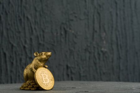 Figurine of Christmas rat Symbol of the new year 2020 with Golden Bitcoins coin Фото со стока