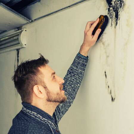 Bearded man removes black mold on the wall after leakage - Image toned