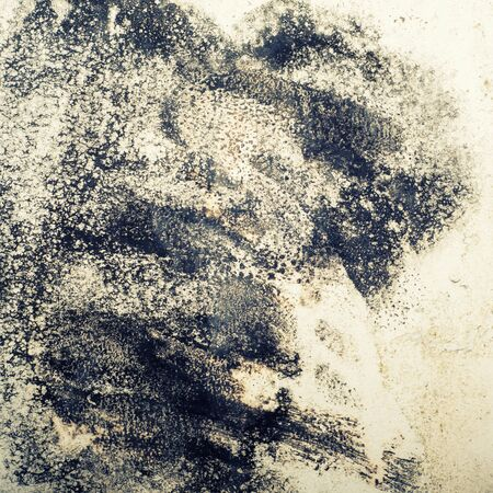 Big wet spots and cracks and black mold on the wall of the domestic house room after heavy rain and lot of water - Image toned Banco de Imagens