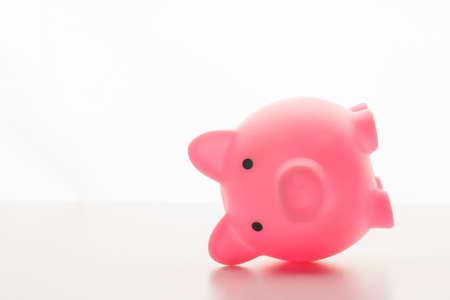 pink piggy bank lying on its side isolated on white background Imagens