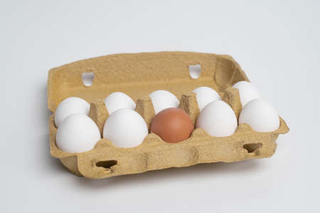 Paper tray full of white eggs and only one different orange egg. Discrimination, Xenophobic, racist concept. 免版税图像