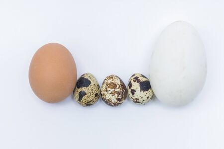 Chicken and quail eggs on a white background symbolize a family with children. Interracial marriage concept, mulatto. Ludicrous images of human persons on chicken eggs 스톡 콘텐츠