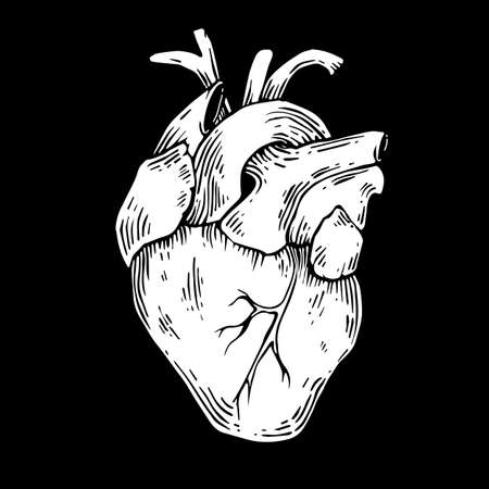 Black and white vector heart isolated on black background