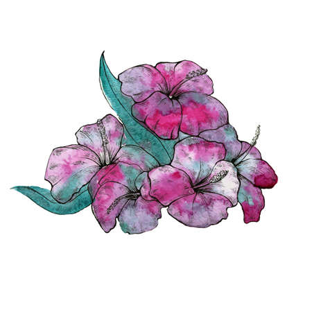 Watercolor vector isolated flower composition