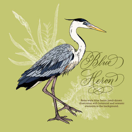 Retro style hand-drawn blue heron and seashell illustration with botanical and oceanic decorative elements.
