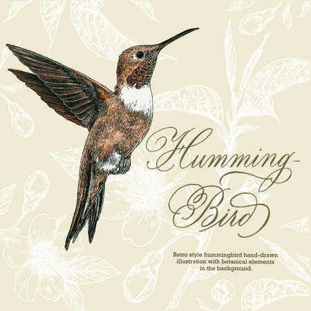 Retro style hummingbird hand-drawn illustration with botanical elements in the background.