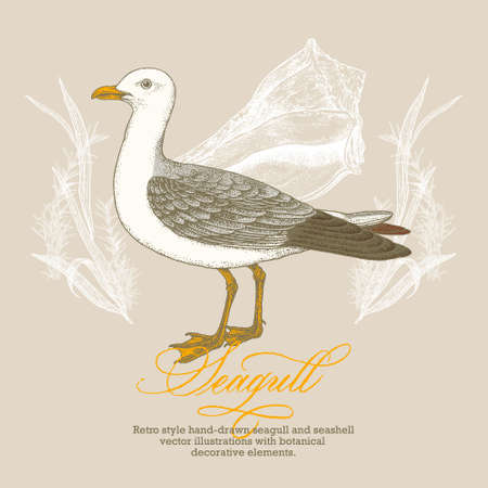 Retro style hand-drawn seagull and seashell vector illustration with botanical decorative elements.