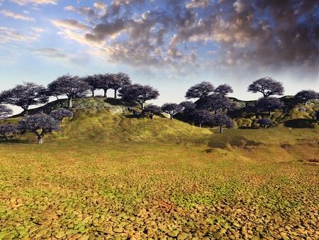 colorful desert landscape photo