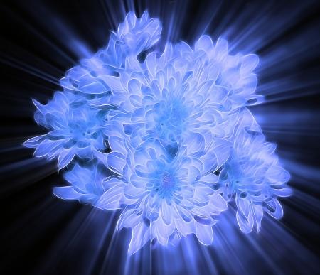 Fantasy flowers photo