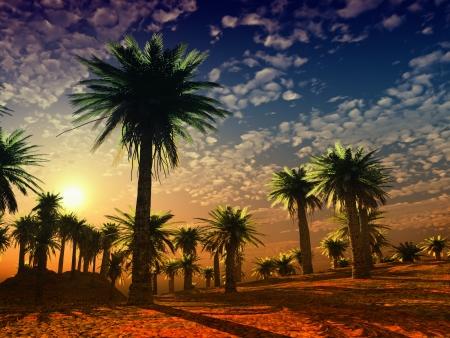 カラフルな風景 写真素材