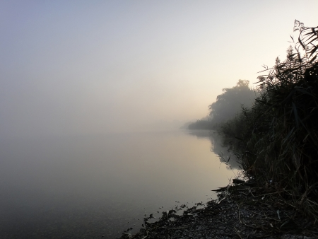 desolation: Morning on the Lake                                Stock Photo