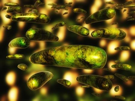 killer cells: Bacteria