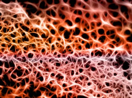 meshwork: Abstract Web