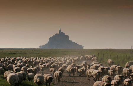 Mont 聖者 Michel、ノルマンディー、フランス 写真素材