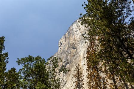 el capitan: World famous rock climbing wall of El Capitan, Yosemite national park, California, usa