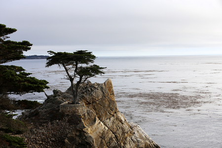 A view of Pebble Beach golf  course, Monterey, California, USA