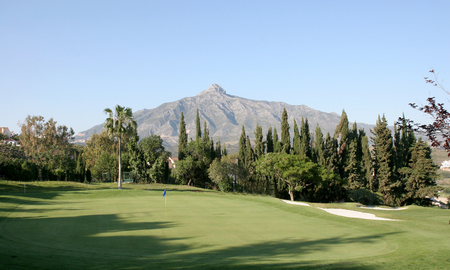 golfcourse: golf course with fairway and green