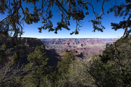 south rim: Colorado grand canyon, from south rim, Arizona