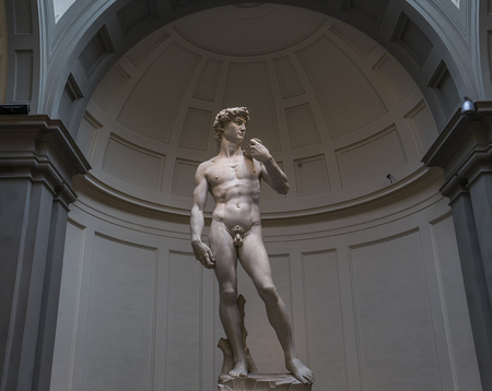 michelangelo: FLORENCE, ITALY, OCTOBER 24, 2015 : Michelangelo David statue in Accademia, october 24, 2015 in Florence, Italy