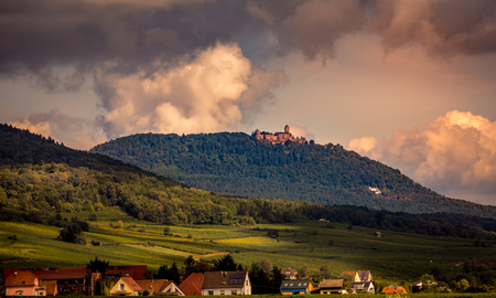 Weinberge an der Weinstraße, Kaysersberg, Elsass, Frankreich