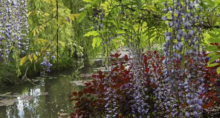 impressionists gardens and ponds of Claude Monet in Giverny, Normandy, France