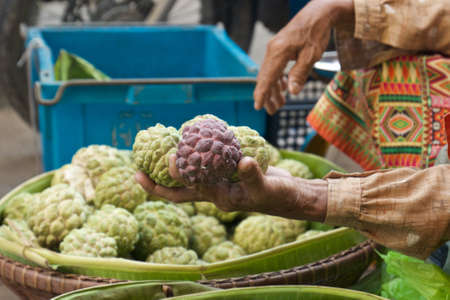 custard apples: Woman Selling sugar applescustard apples on basket.
