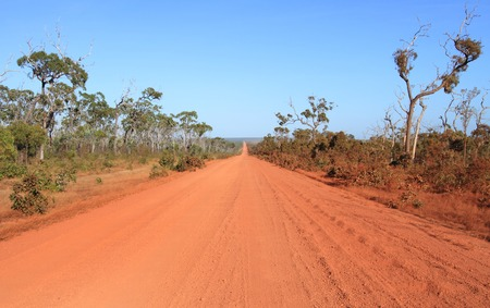 A straight section of red dirt outback road on the Cape York Peninsula with corrugation.