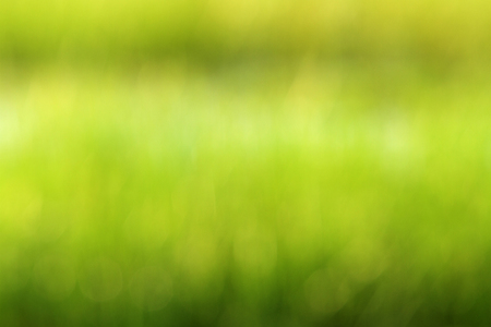 Out of focus green field background with bokeh and copy space.