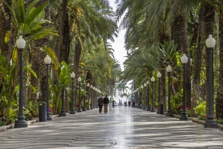 paseo: Explanada de España