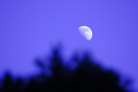 Shone circle of the moon in darkness on a background of the  sky  photo
