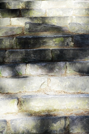 expressed: scene rustic stone staircase on the outside with weeds and vegetation highlighting texture hardness expressed