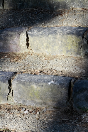 hardness: scene rustic stone staircase on the outside with weeds and vegetation highlighting texture hardness expressed