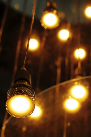 ecological environment: SAVING BULBS LAMPS ECOLOGICAL ENVIRONMENT FRIENDLY