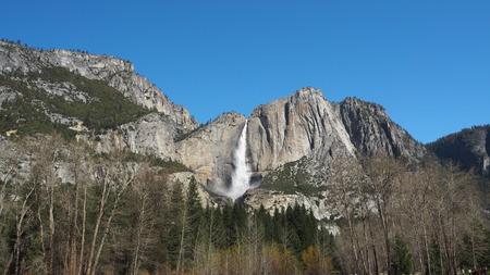 sequoia: Tokopah Falls
